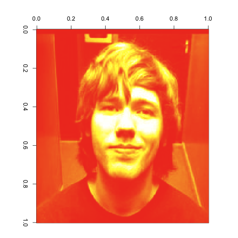 Image Compression with the SVD in R